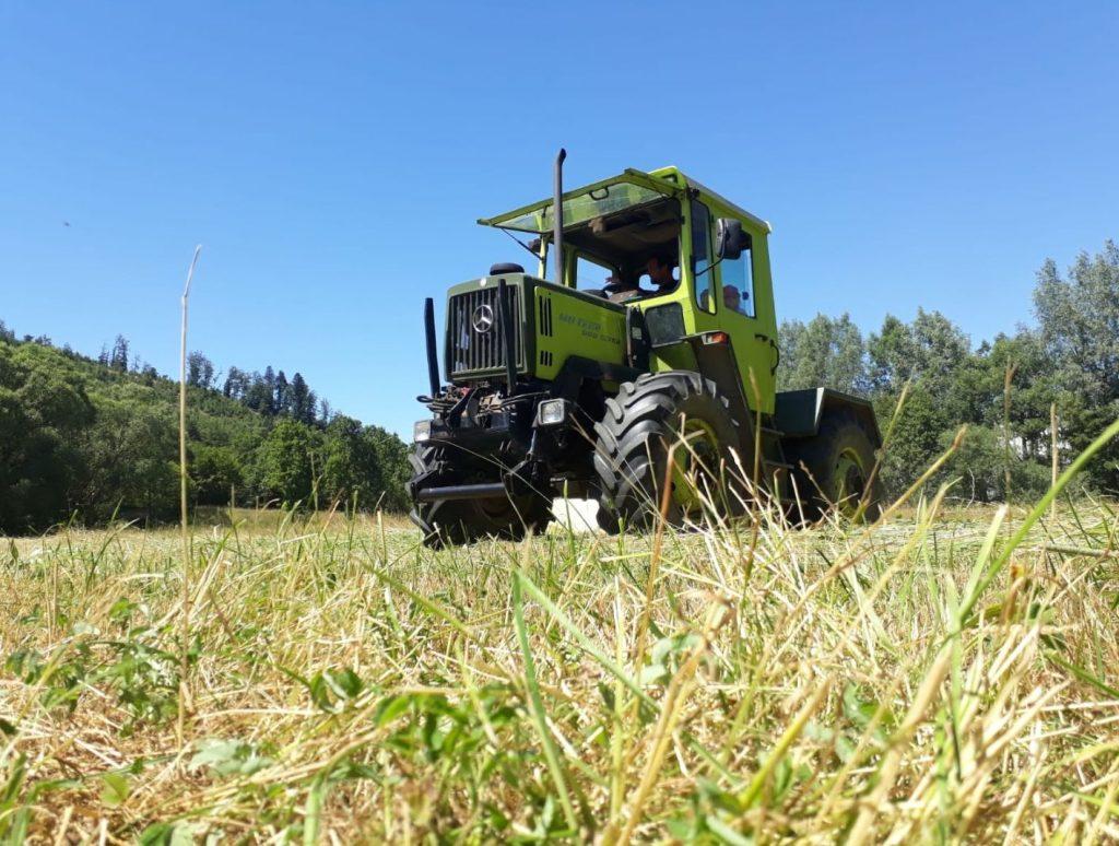 Heuernte auf einem Feld, mit Traktor