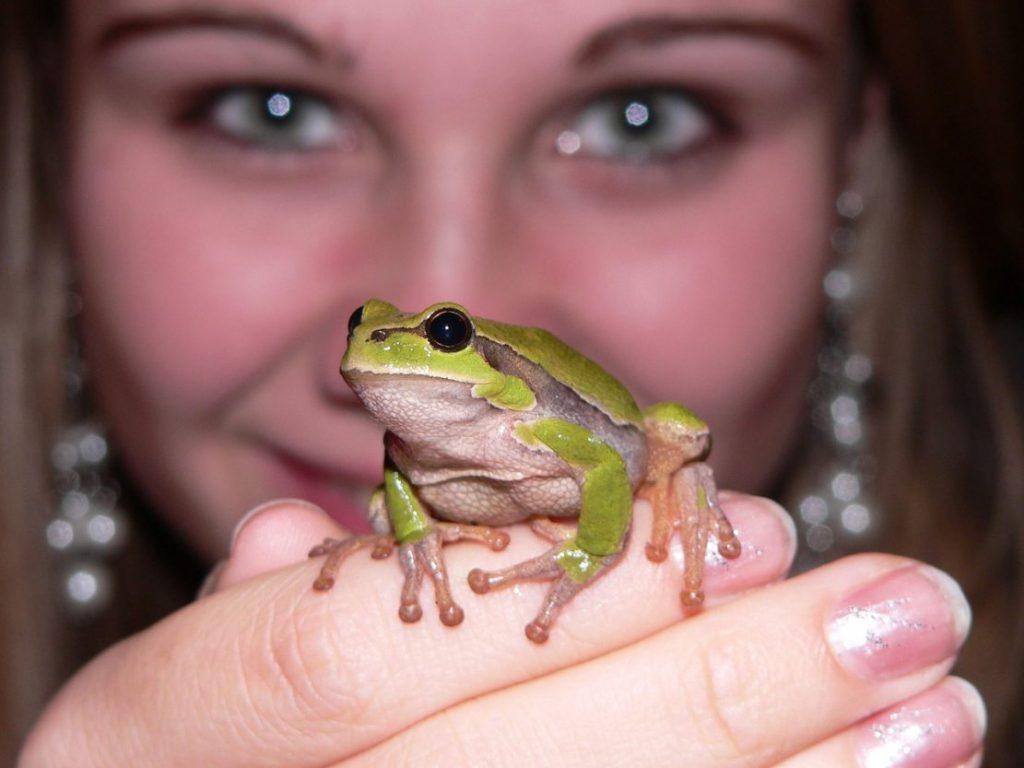 Eine junge Frau, reich geschmückt, hält einen lebenden, echten Frosch auf der Hand.
