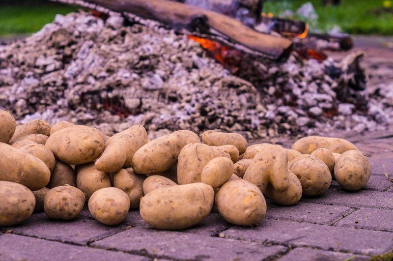 kartoffeln und Glut