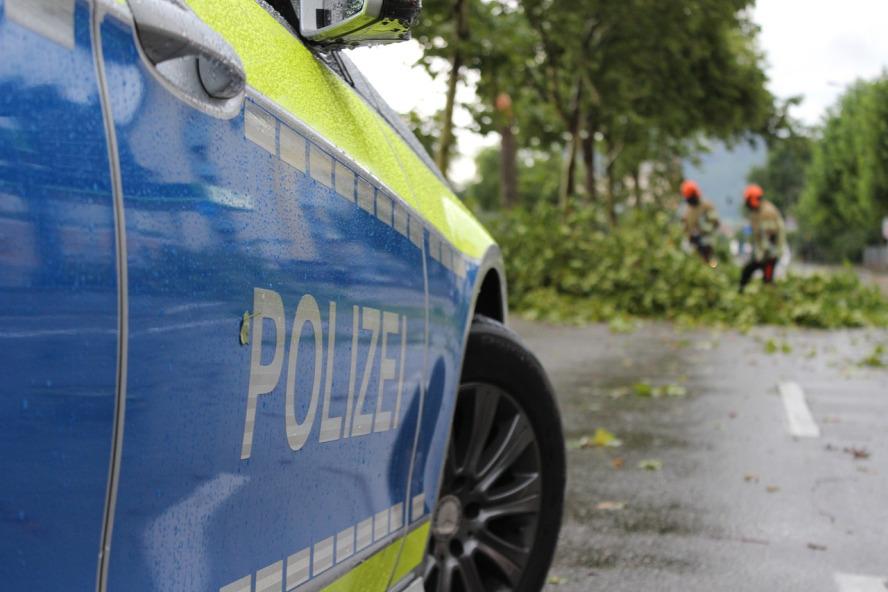 Baumfällarbeiten und ein wartendes Polizeifahrzeug auf der Straße