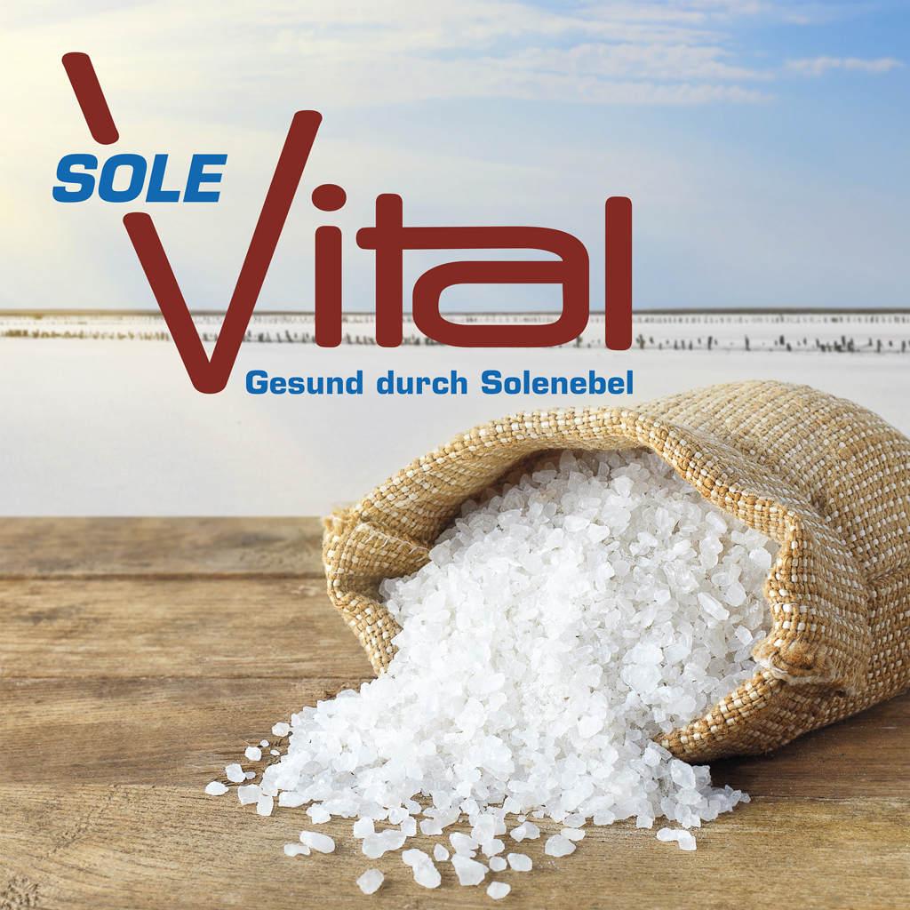 Ein umgefallener Sack grobes Meersalz. Das salz rinnt heraus auf den Holzboden.