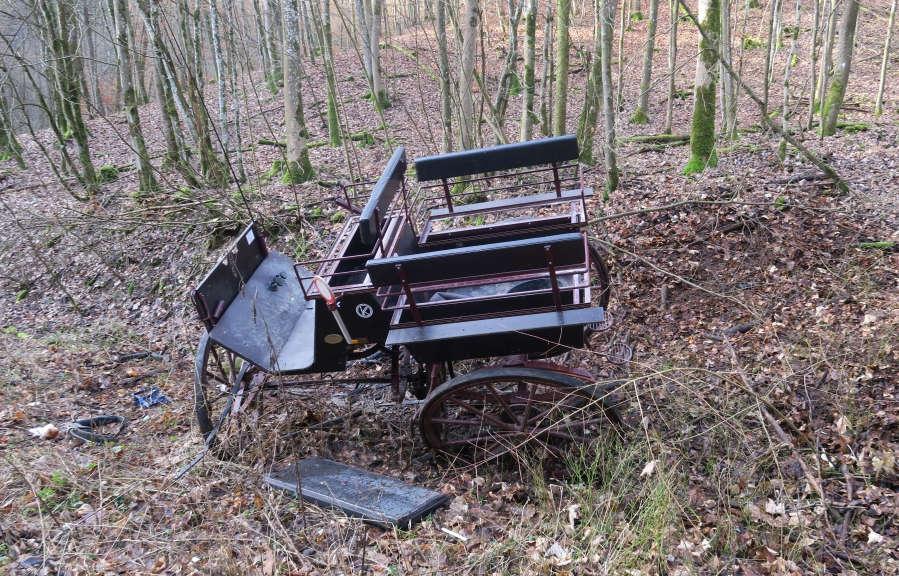 Eine schwarze Kutsche liegt verunfallt im Wald zwischen Bäumen und Gestrüpp.