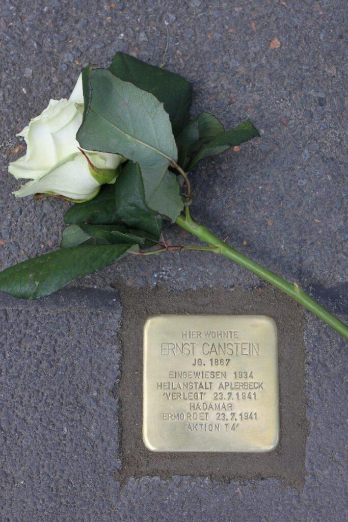 Stolperstein mit Inschrift und eine weiße Rose darüber