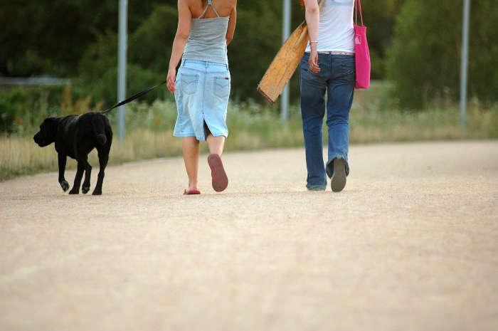 Paar mit Hund geht spazieren.