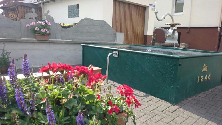 Grüner Brunnenkasten. Davor Blumen.