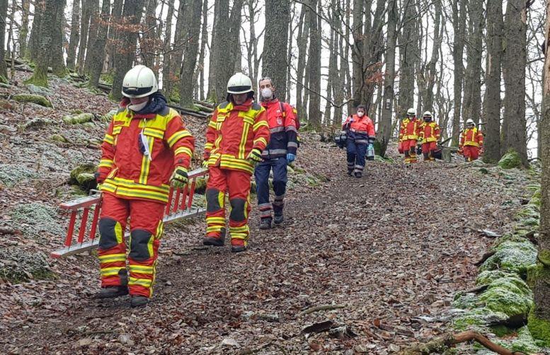 Einsatzkräfte mit Leitern im Wald