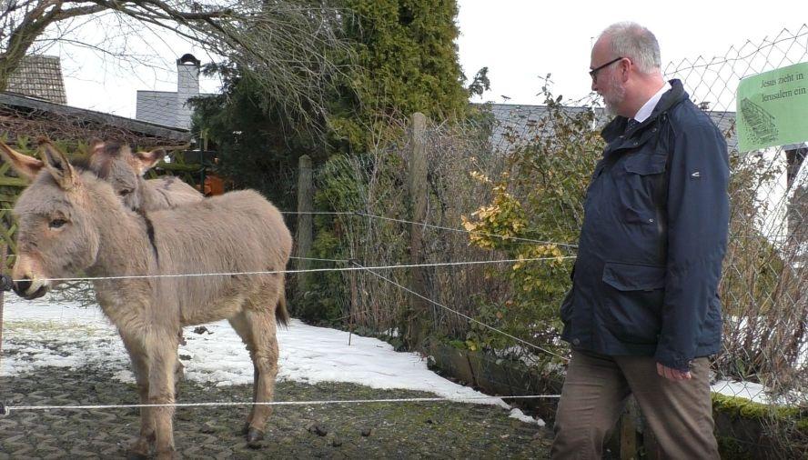 Mann steht vor einem Gehege mit 2 Eseln.