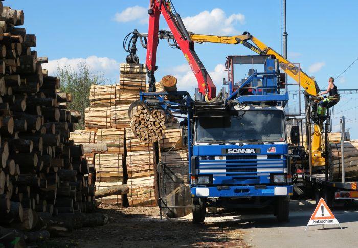 Holztransporter, schwer beladen.