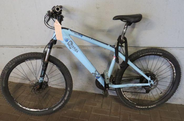 hellblaues Fahrrad