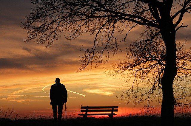 Bank und Baum und Spaziergänger im Sonnenuntergang